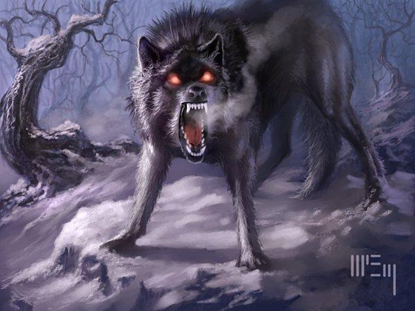160410wolf